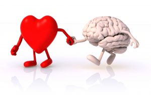 Heart-Brain Connection